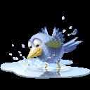 1255097759_poolbird